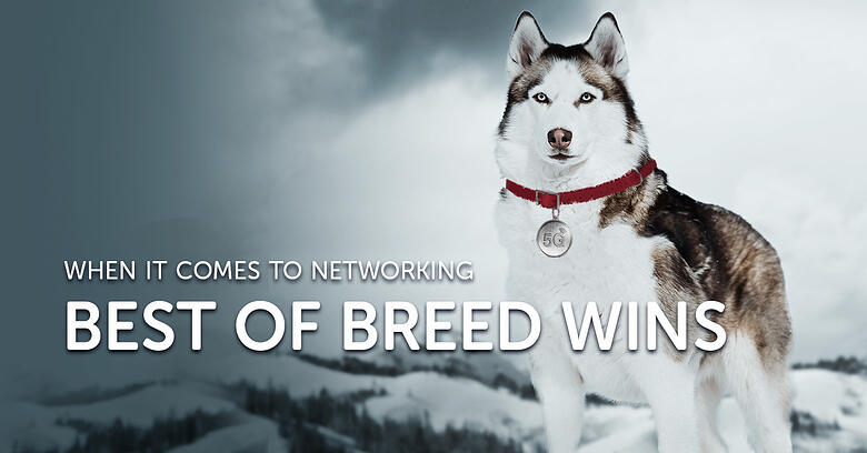 Best of Breed Wins When It Comes to Networking